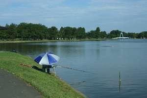 水元公園釣り人