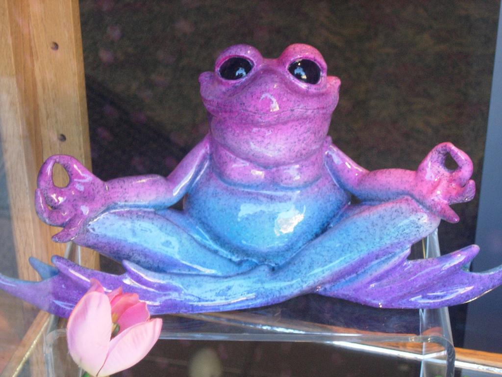 カエル瞑想